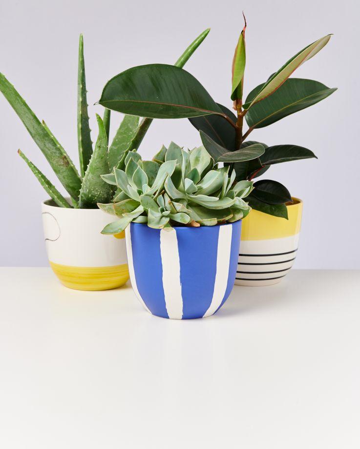 Flores Planter blue striped